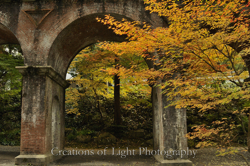 Kyoto in Fall Color 063