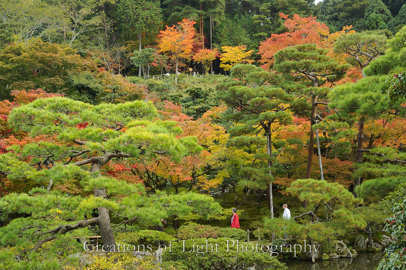 Kyoto in Fall Color 048