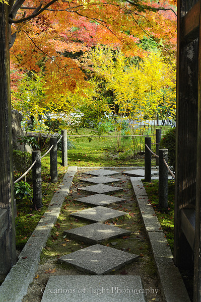 Kyoto in Fall Color 041