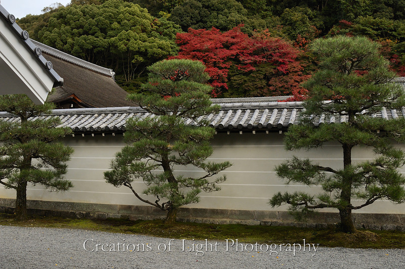 Kyoto in Fall Color 069