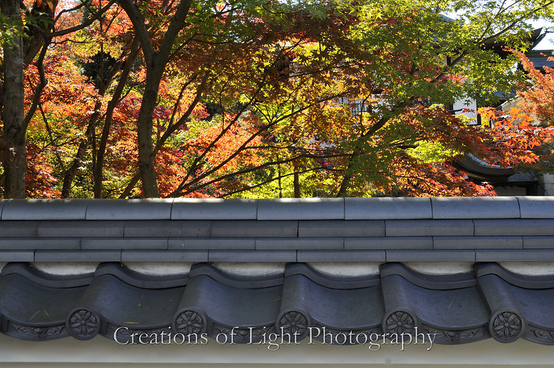 Kyoto in Fall Color 085