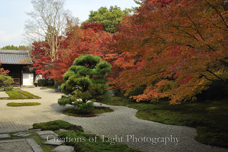 Kyoto in Fall Color 030