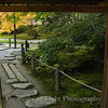Kyoto in Fall Color 038