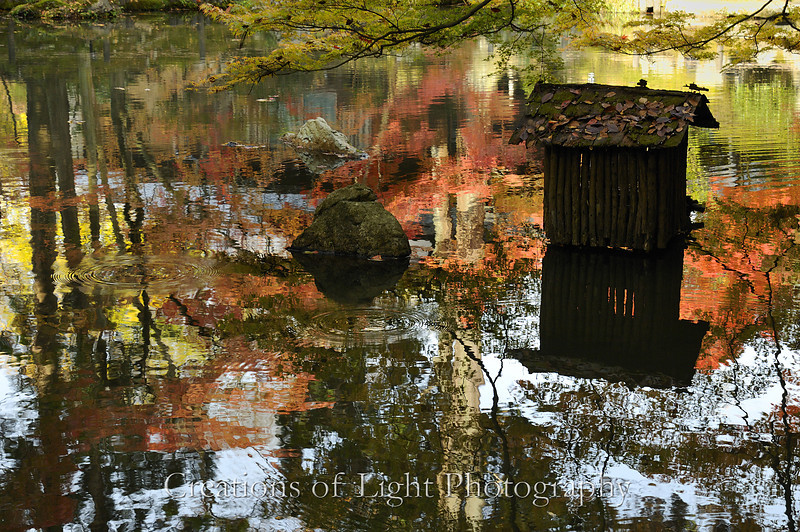Kyoto in Fall Color 033