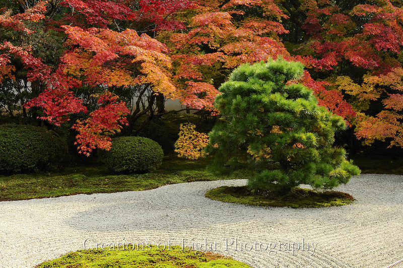 Kyoto in Fall Color 029