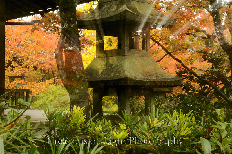 Kyoto in Fall Color 006