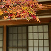 Kyoto in Fall Color 076