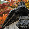 Kyoto in Fall Color 024
