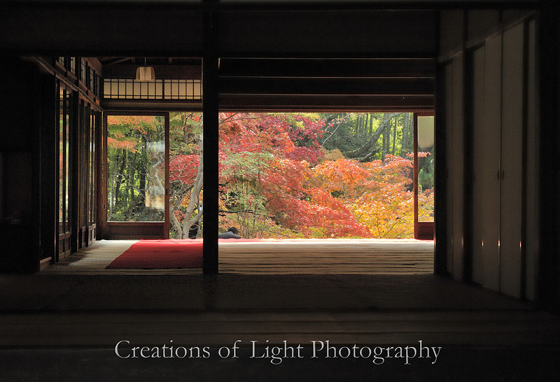 Kyoto in Fall Color 026