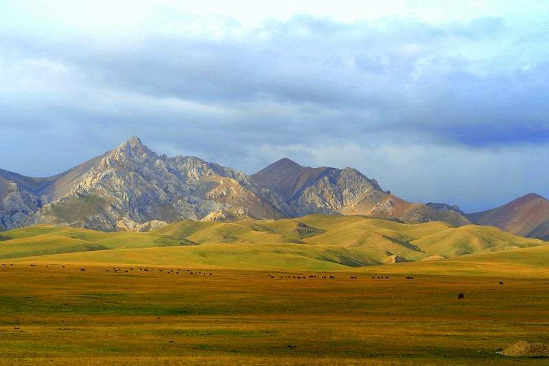 Travelling around Kyrgyzstan during the World Nomad Games; this is from a trip to Song Kol Lake.