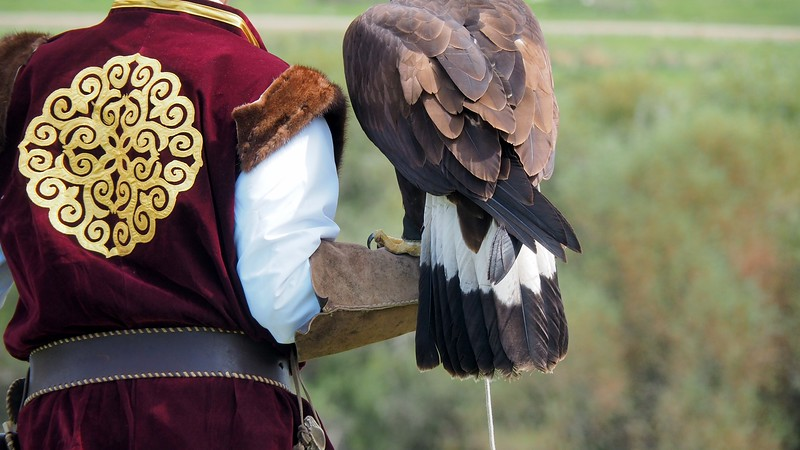 Hunting with birds of prey at the World Nomad Games.
