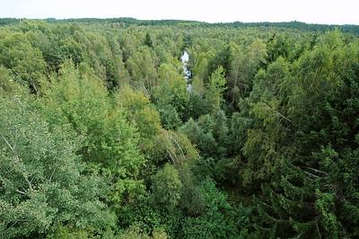 Waldviertel