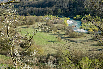 Vallon de l'Allondon