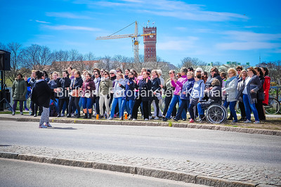 Wings for life Kalmar 2017