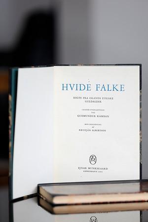 Hvide Falke