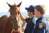 LAFD HORSES PORTER RANCH__10