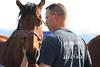 LAFD HORSES PORTER RANCH__06