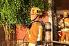 LAFD TITANIUM FIRE__005