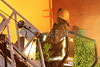 LAFD TITANIUM FIRE__003