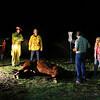 LACOFD_HORSE RESCUE PLACERITA__24