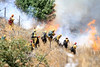 LACoFD NEWHALL BRUSH_010