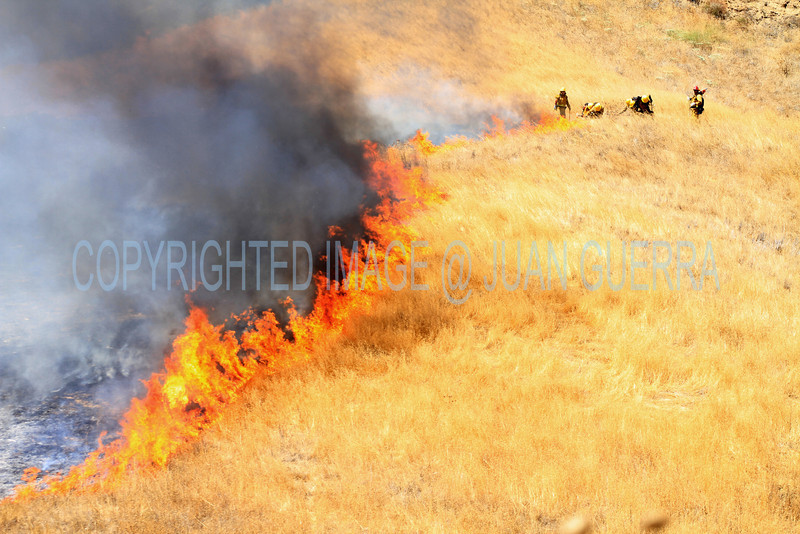 LACoFD NEWHALL BRUSH_007