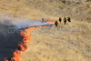 LACoFD NEWHALL BRUSH_016