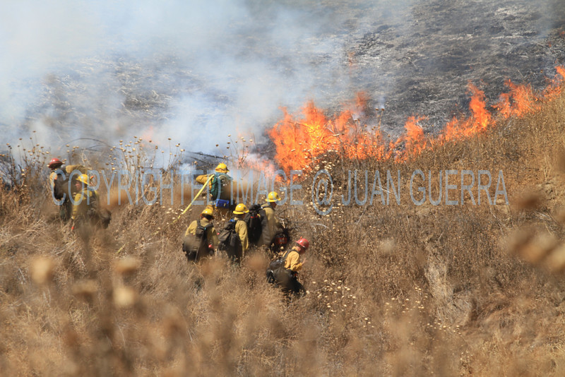 LACoFD NEWHALL BRUSH_017