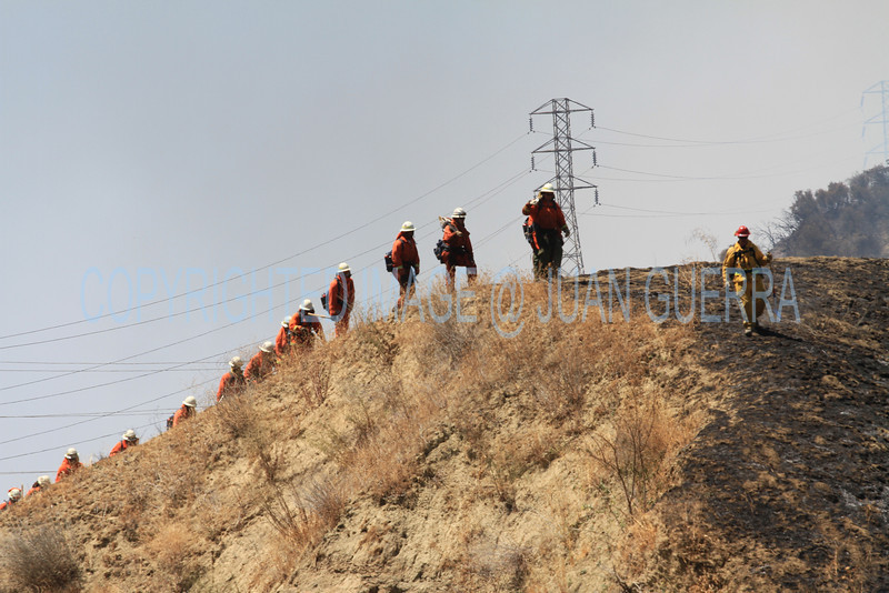 LACoFD NEWHALL BRUSH_014