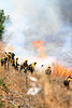 LACoFD NEWHALL BRUSH_011