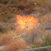 LACoFD HASKELL  IC_019