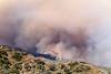 LACoFD BRUSH FIRE WILLIAMS FIRE_039