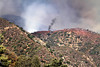 LACoFD BRUSH FIRE WILLIAMS FIRE_041