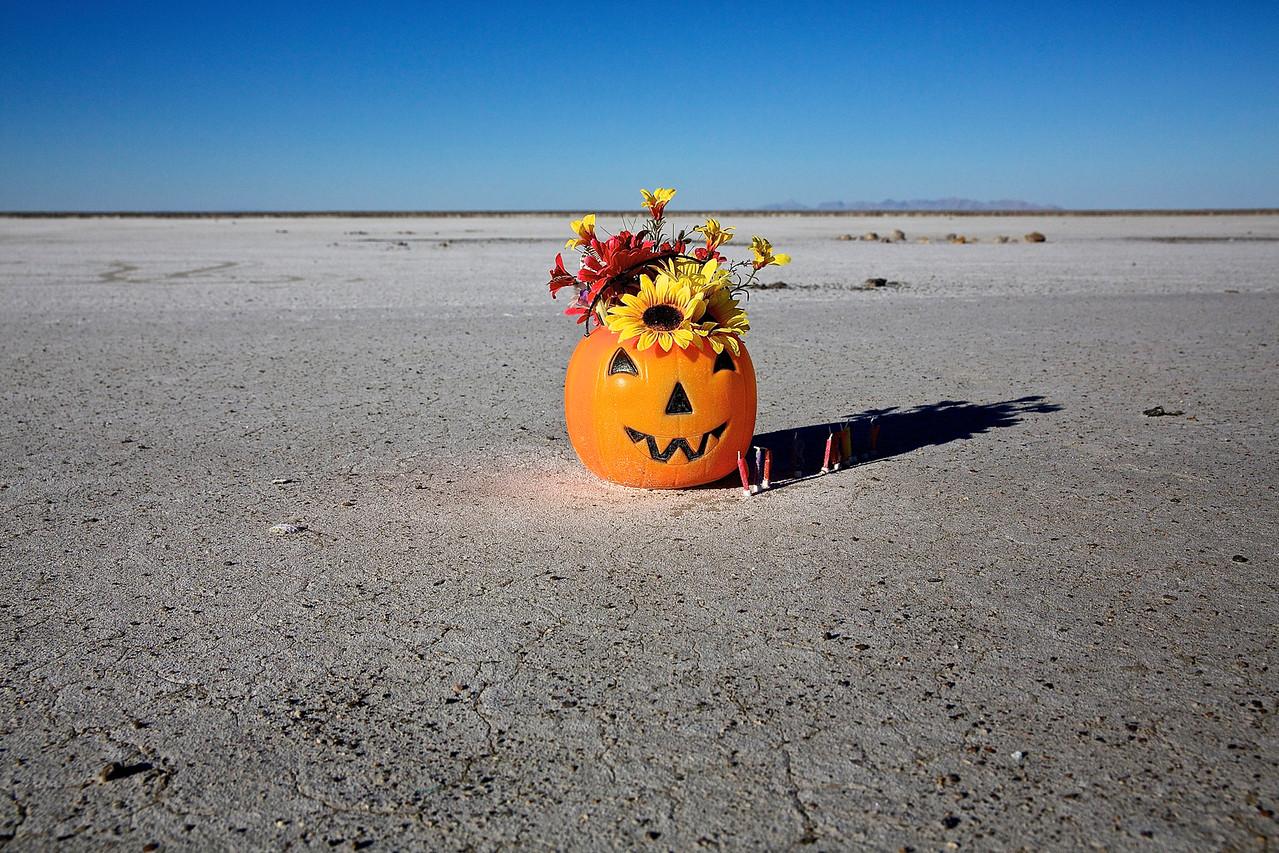 HALLOWEEN PUMPKIN. GREAT SALT LAKE, UTAH