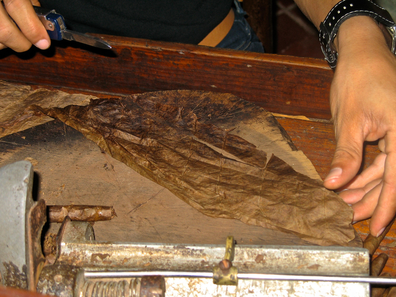 The rolling process then begins, by adding layers of leaves to the outside.