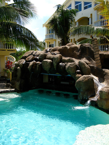 The swim up bar.