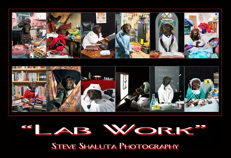 LabWorkPoster20x30