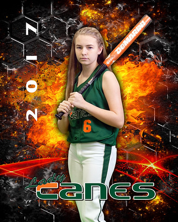 LADY CANES 2017