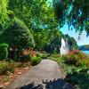 Lake Anne 2284-H