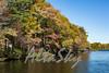 Lake Jeanette Fall 2016020
