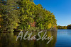 Lake Jeanette Fall 2016013