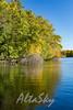 Lake Jeanette Fall 2016015