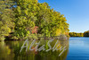 Lake Jeanette Fall 2016014