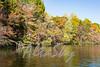Lake Jeanette Fall 2016016