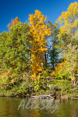 Fall Colors at Lake Jeanette 2016