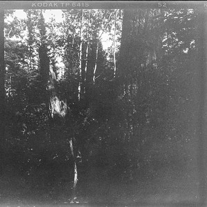 Mamiya 6 Film Camera - at the Lake
