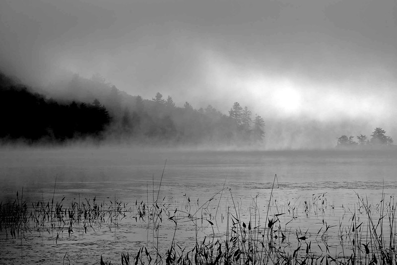 lake fog #2