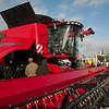 LAMMA 2014 Crowd pictures043