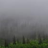 Placer Valley Fog