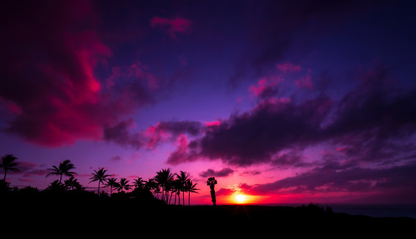 Kapalua Sunset I